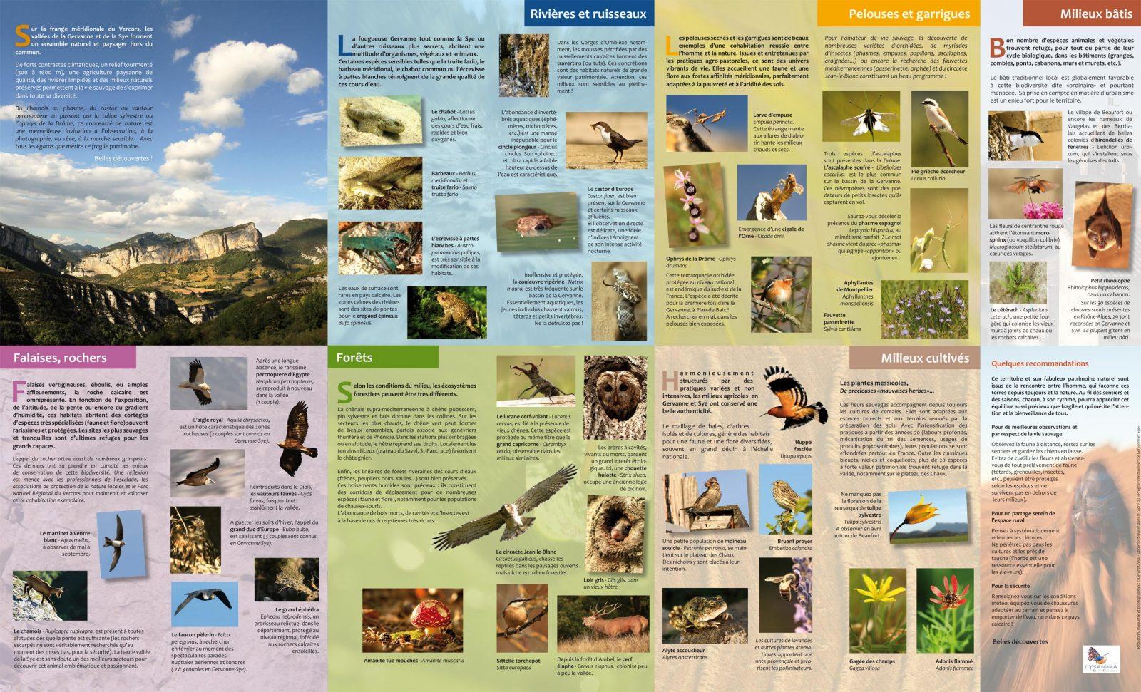Découvertes nature en Pays de Gervanne et de Sye
