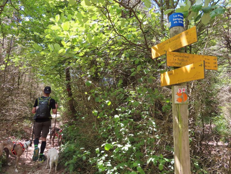 itinéraire Bois de la Dame
