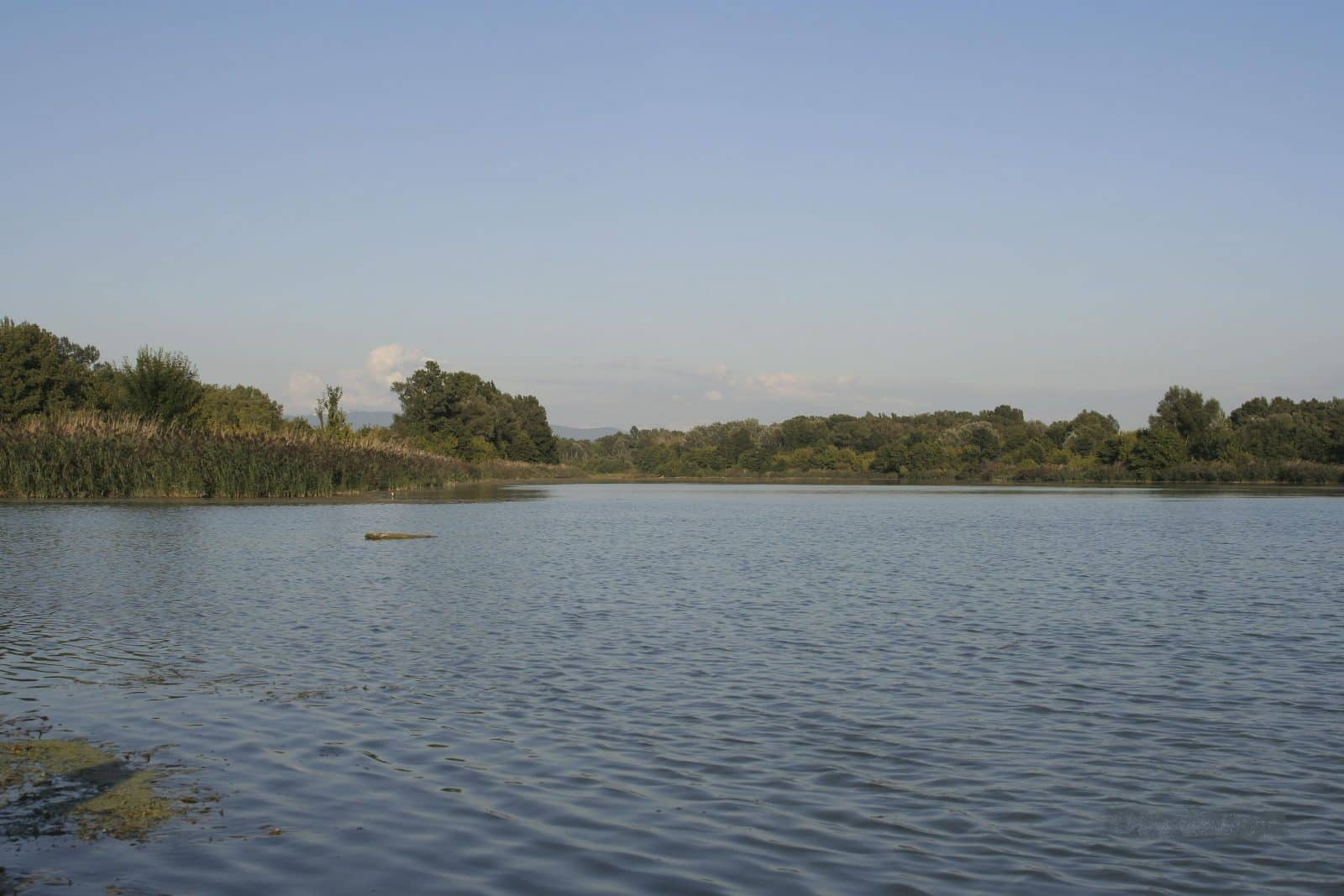 Zone Natura 2000 de Printegarde