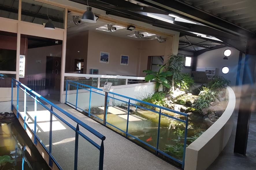 Bassin tortues Aquarium des Tropiques