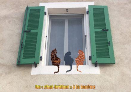 Des Chats-Brillants aux fenêtres